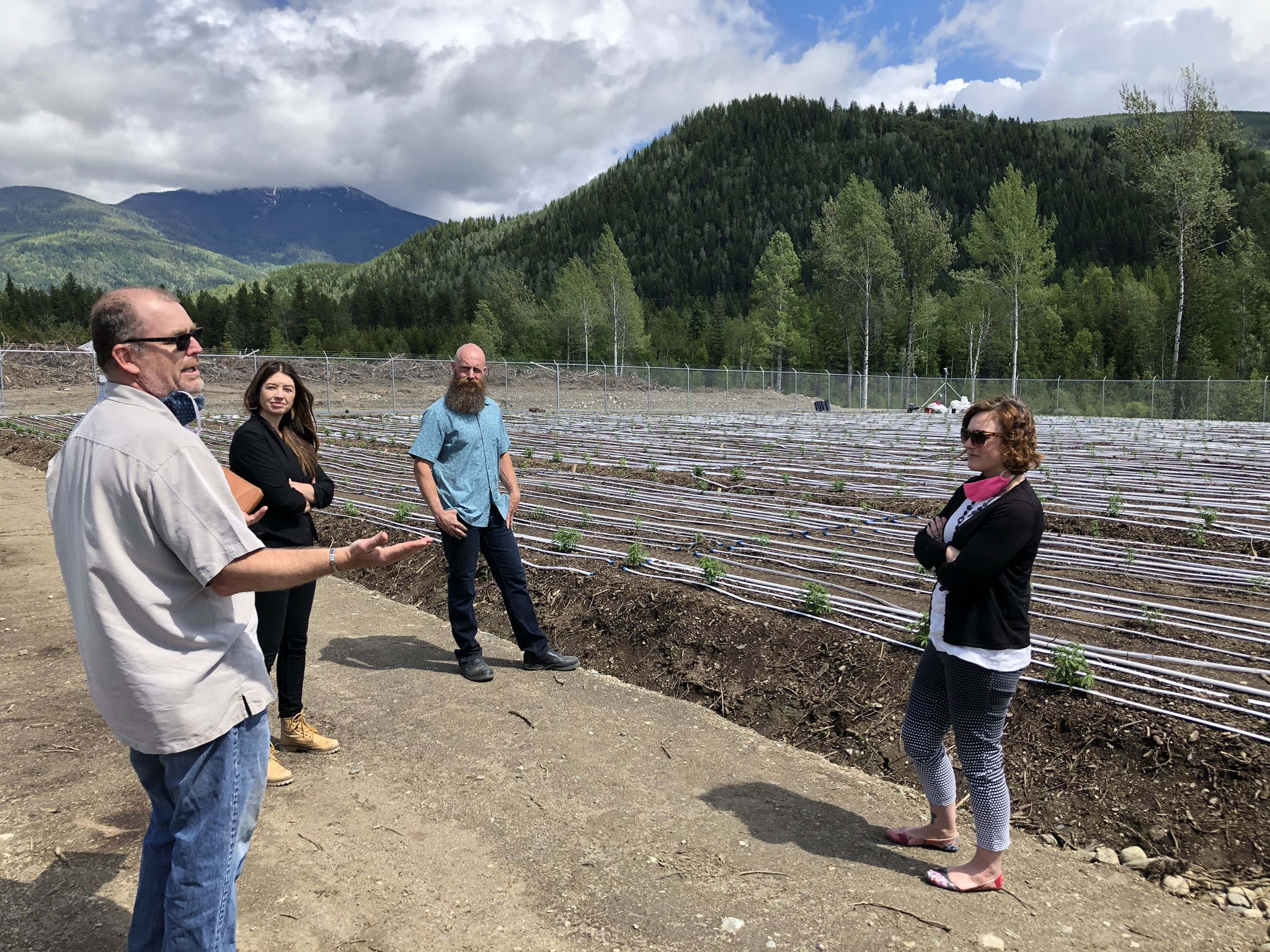 Kootenay cannabis growers benefit from local licensing program