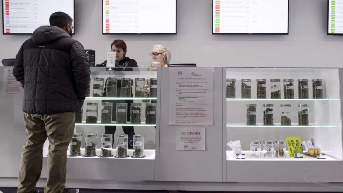 Ontario sold 35 million grams of dried cannabis in its first full fiscal year of commercial operations