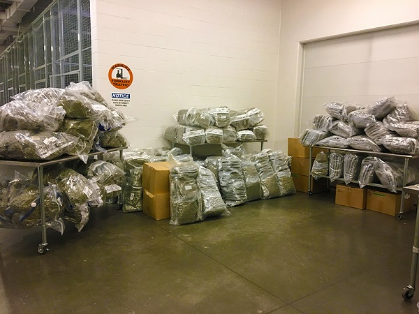 Four BC men charged with exporting cannabis to Europe