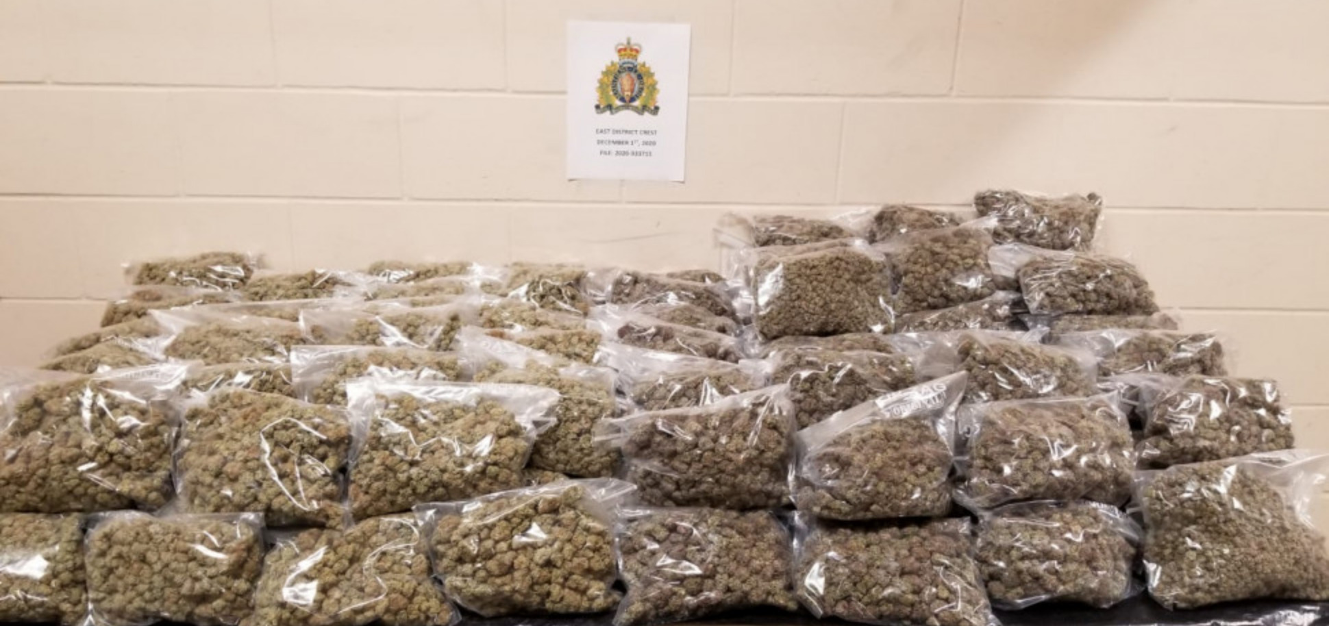 Manitoba RCMP seize over 27 kilograms of cannabis during a traffic stop