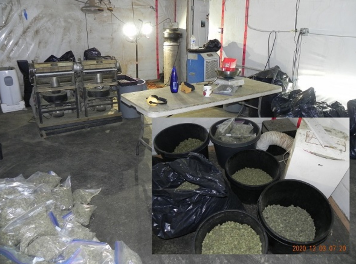 RCMP seize 3,230 cannabis plants in ongoing investigation of illicit production in BC