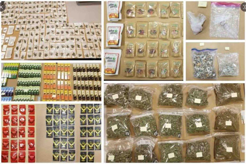 Surrey Drug Unit busts illegal cannabis operation