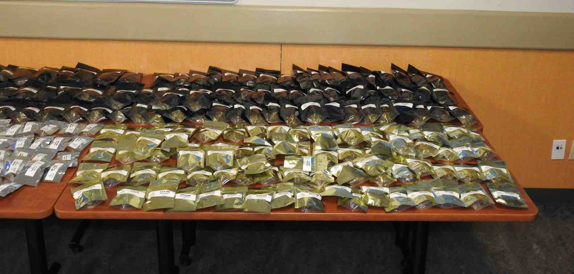 Waterloo police seize over $200,000 in cannabis products