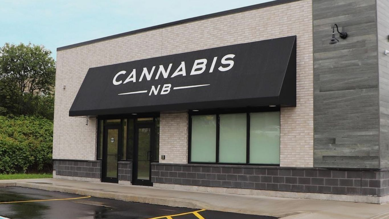 Cannabis NB's third-quarter results show continued increase in profits, as a decision on privatization still in limbo