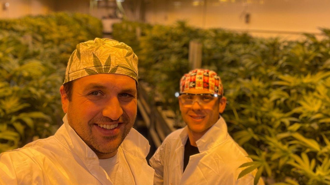 Grump Weed's aeroponic micro cannabis