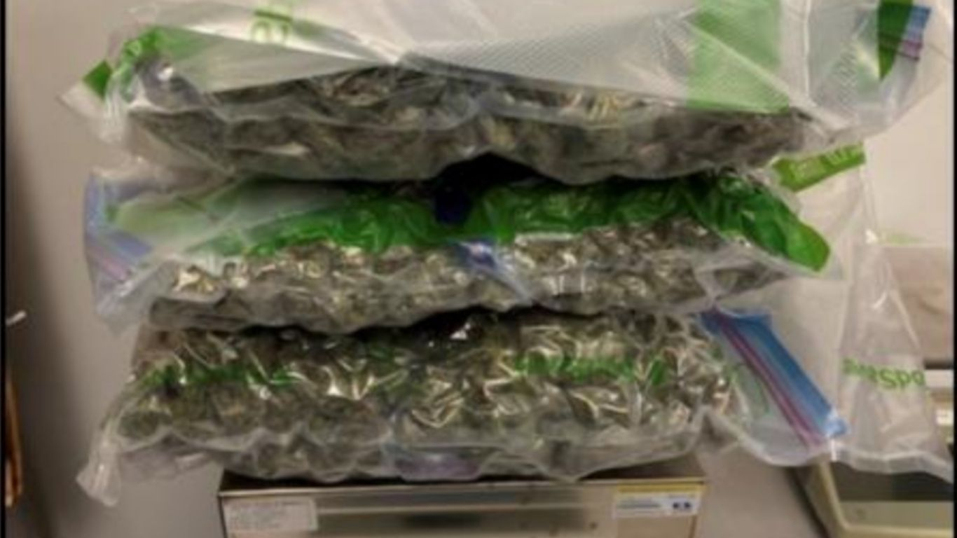 US border agents seize more cannabis entering US from Canada