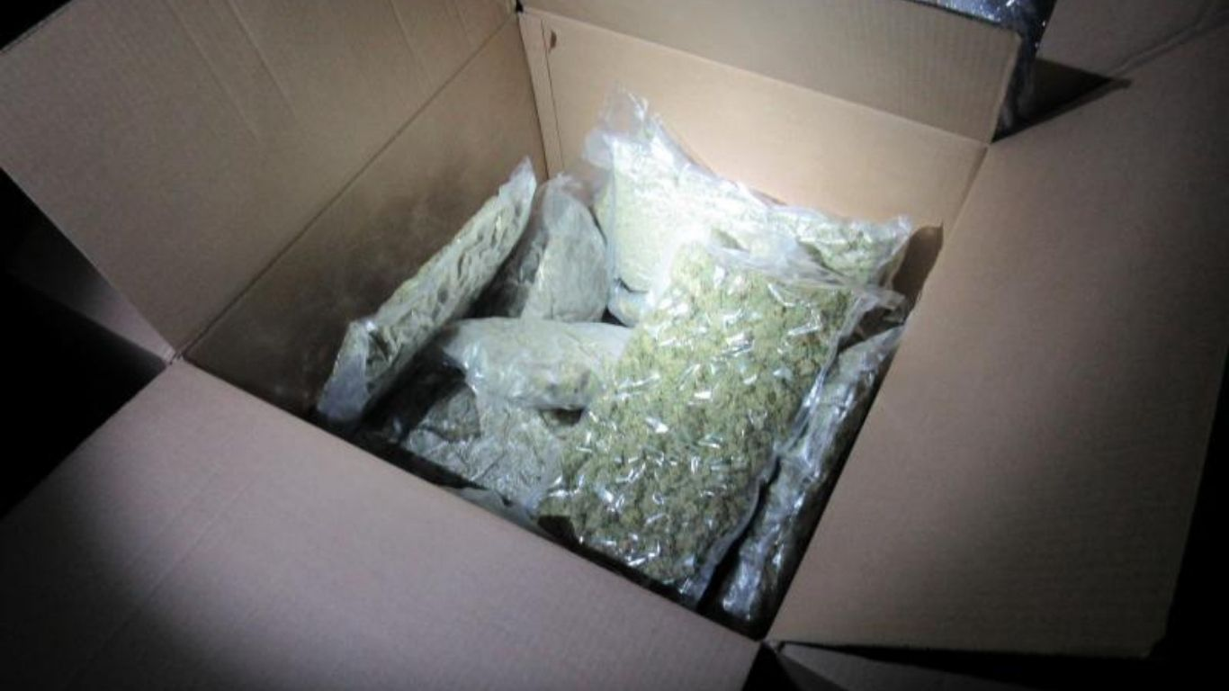 Another $1 million of Canadian cannabis seized at US border