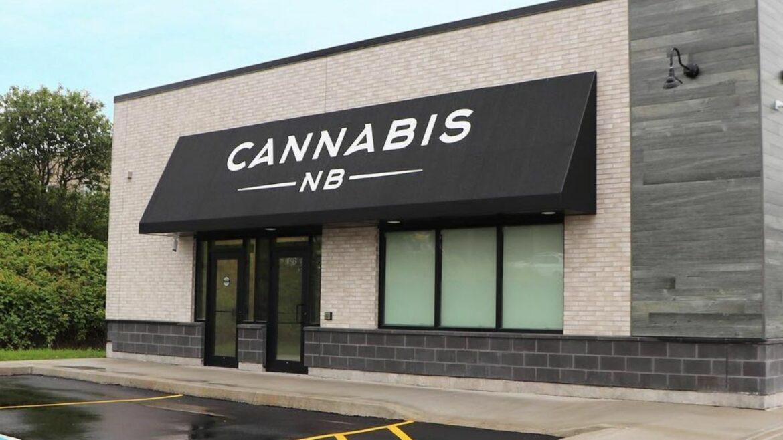 New Brunswicker starts petition to block sale of Cannabis NB
