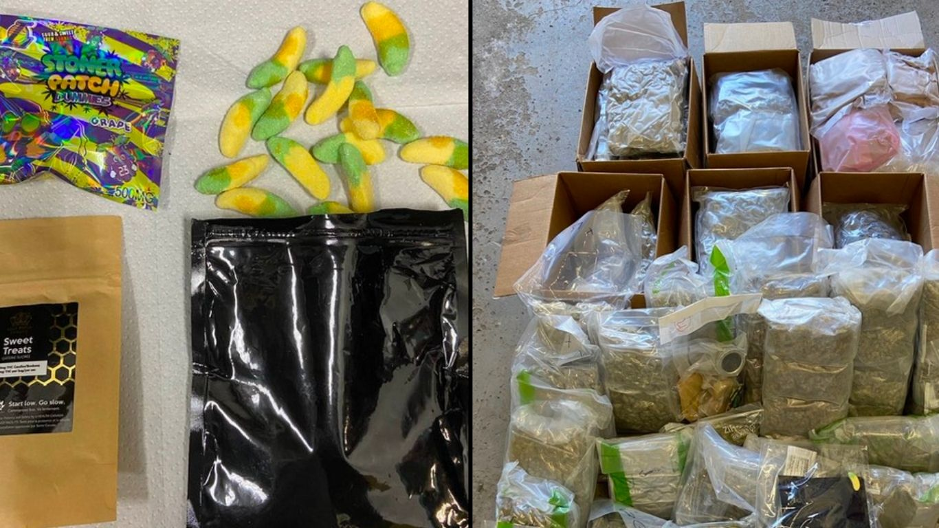 New Brunswick RCMP seized BC weed and edibles destined for NB and PEI